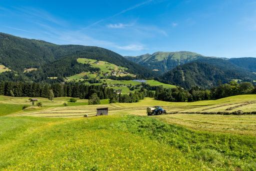 Grüne Hügellandschaft mit Traktor